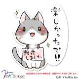 反省しない猫3-舞夢