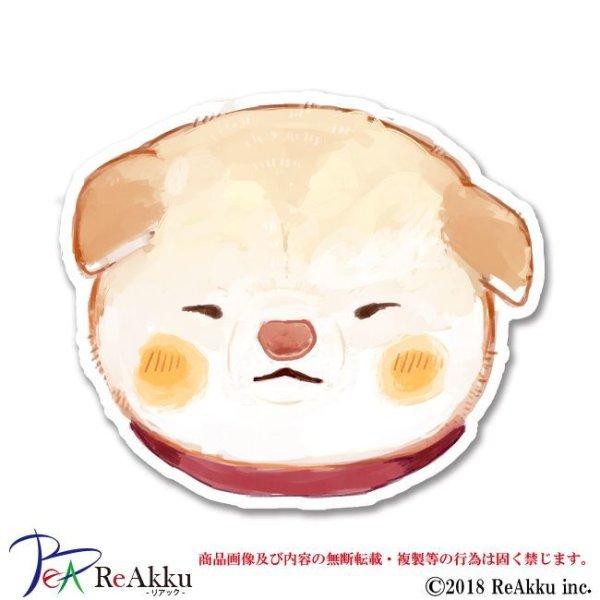画像1: 子白柴のお顔-fumika (1)