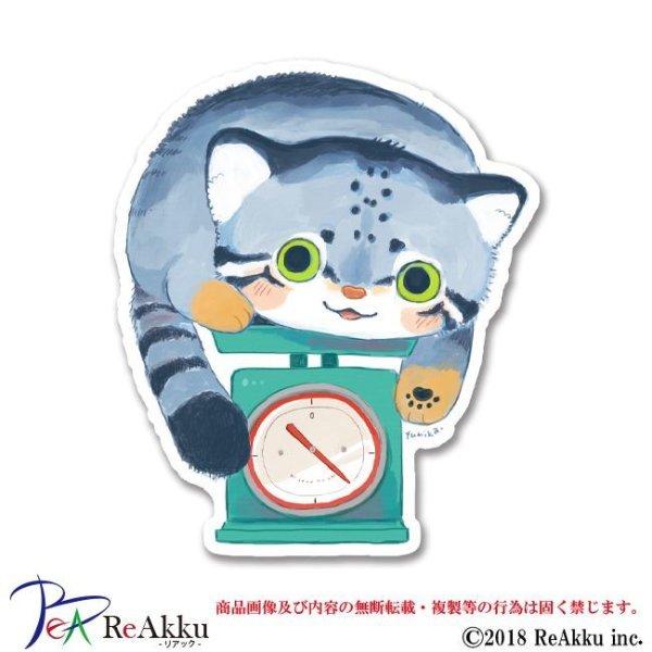 画像1: マヌルネコ計量-fumika (1)
