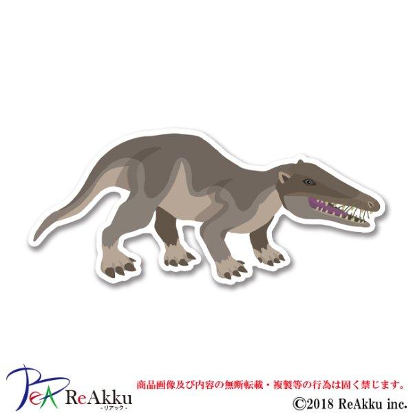 画像1: パキケトゥス-keeta (1)